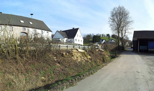 20130420_175519_Bäume-weg