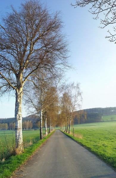 20130426_072213_Seidfelder-Strasse