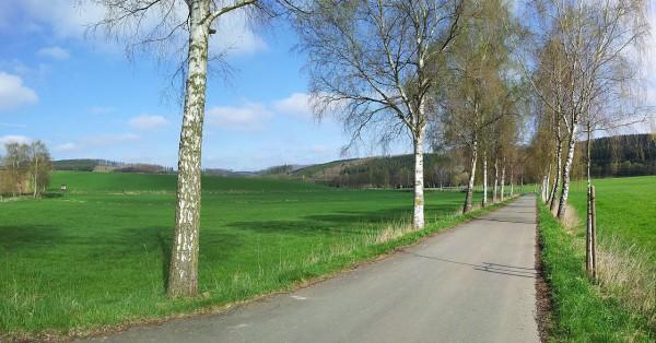 20130428_100503_Seidfelder-Strasse