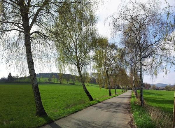 20130428_100813_Seidfelder-Strasse