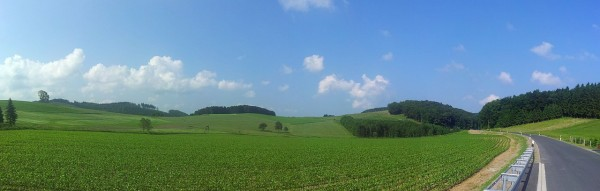 20130706_102614_Richtung-Cobbenrode