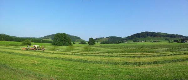 20130709_191905_Richtung-Remblinghausen