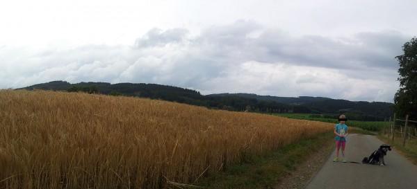 20130728_182626_Seidfeld