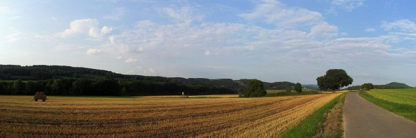 20130828_182944_Schulten-Eiche