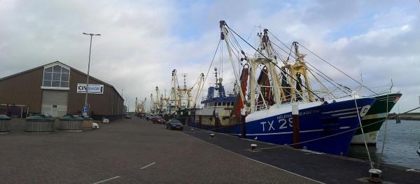 20131026_131409_Texel-Oudeschild