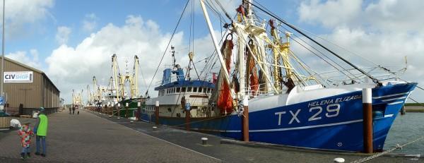 20131027_P1190755_Texel-Oudeschild