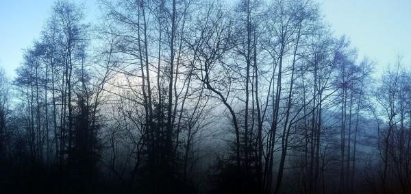 20131211_153748_Sonne_hinter_Wolken