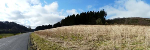 20140223_1138_P1200290_Mülsborn-Schüren