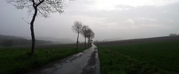 20140501_081251_Schulten-Eiche