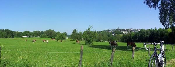 20140609_094535_Hirschberg