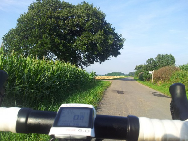200 km an Schulten Eiche
