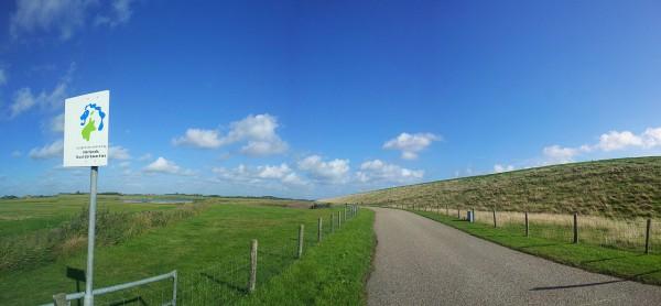20141010_124700_Texel