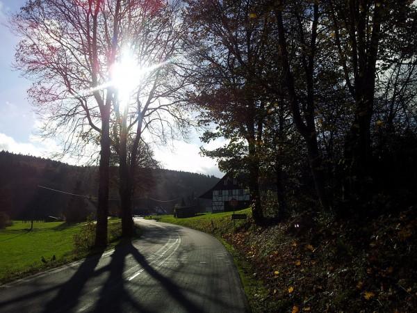20141108_112019_In-der-Marpe