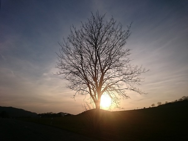 20150410_193637_Altenhellefeld