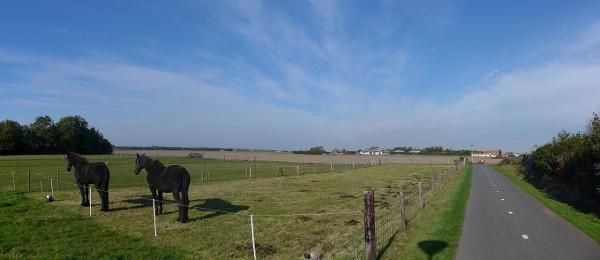 20151012_152214_Texel
