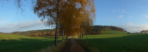 20151107_084608_Seidfelder-Strasse