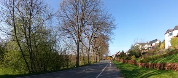 20160421-183053-Allendorf