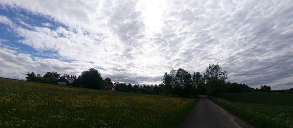 20160531-172851-Wildewiese