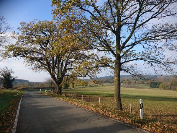 20161112-134239-oelinghausen