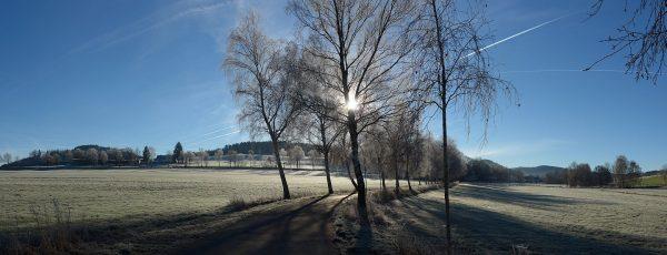 20161204_115714-seidfeld